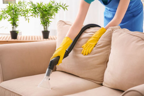 Cheers upholstery cleaning