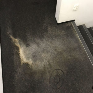 Water damage carpet cleaning – Auckland