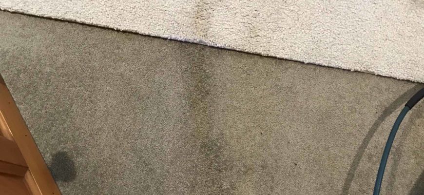 Carpet cleaning Auckland – Coffee marks removal